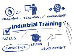 IIUM OFFICIAL GUIDELINE ON INDUSTRIAL TRAINING SEMESTER 2, 2019/2020 DUE TO MOVEMENT CONTROL ORDER (MCO)